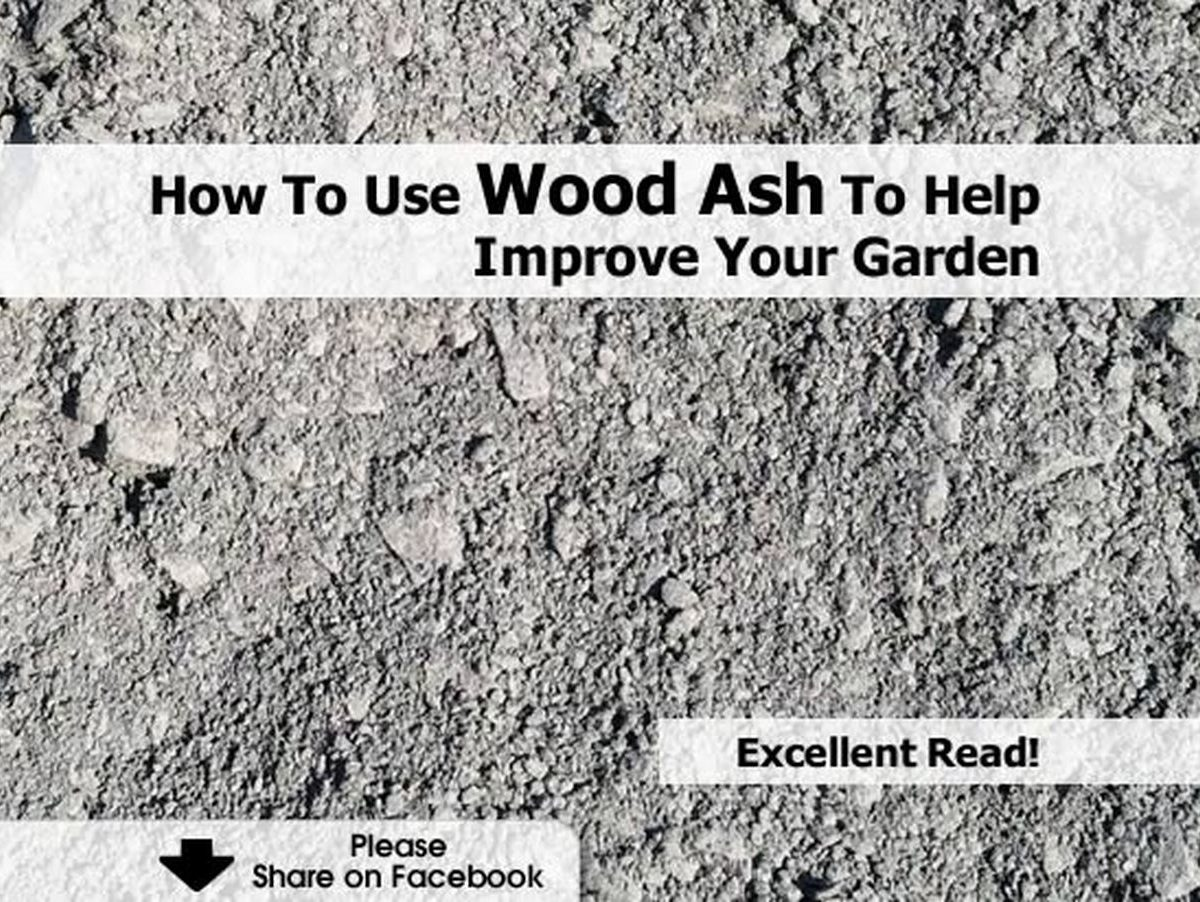 How to use wood ash to help improve your garden for Is wood ash good for the garden